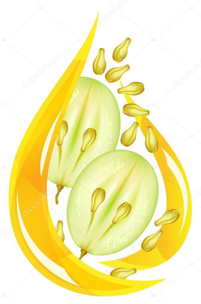 Grape seed oil. Stylized drop.