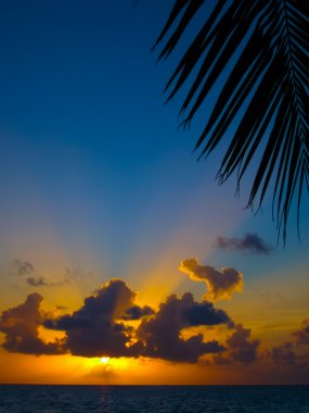 Maldivian Sunset