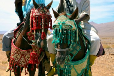 Moroccan riders