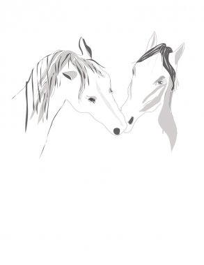 Pair Horses stand tenderly touching