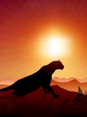 Lion on Sunset Background