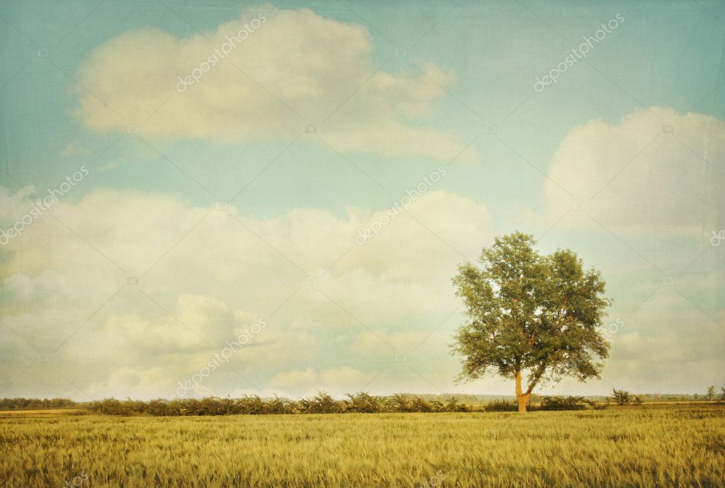 Фотообои Lonely tree in meadow with vintage look