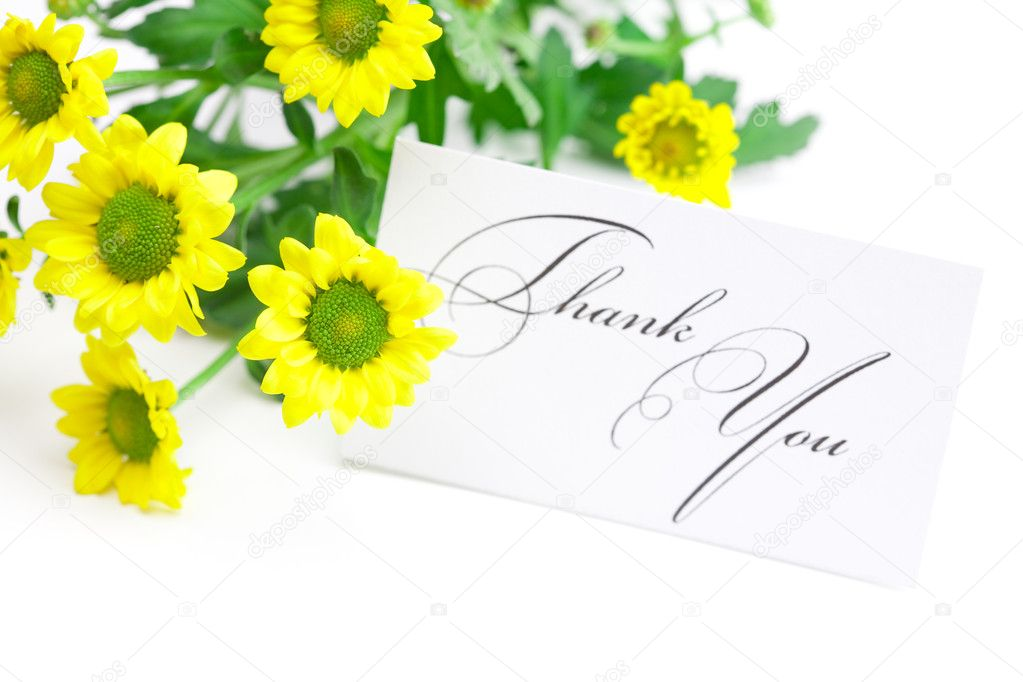Yellow daisy and a card signed thank you isolated on white