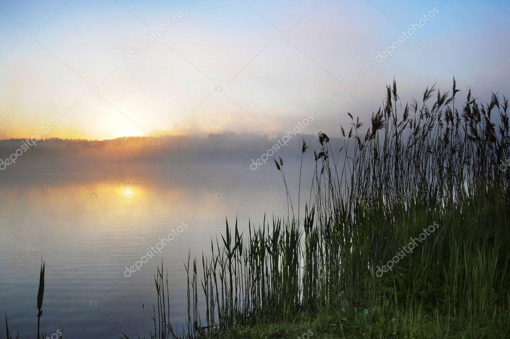 Rural scene on sunset
