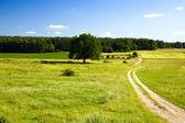 Fényképek így a mező út