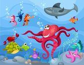 vita di mare