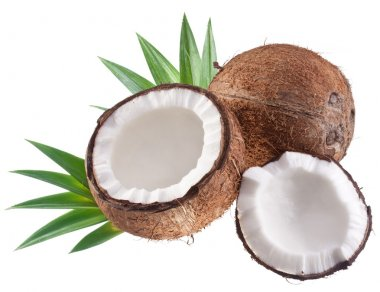 Coconuts on a white background.
