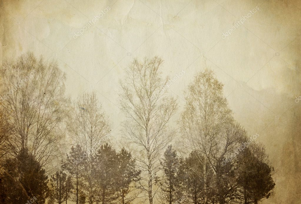 Trees on vintage paper sheet.