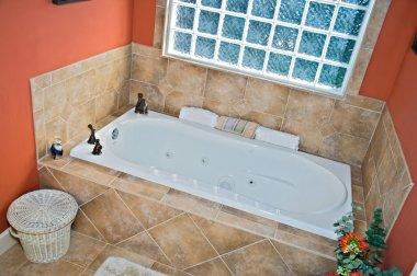 Bathroom Tub Area