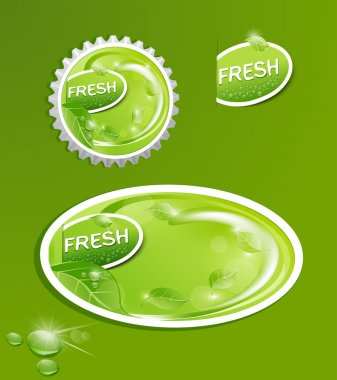 Vector stickers and bottle cap with a juicy, fresh background wi
