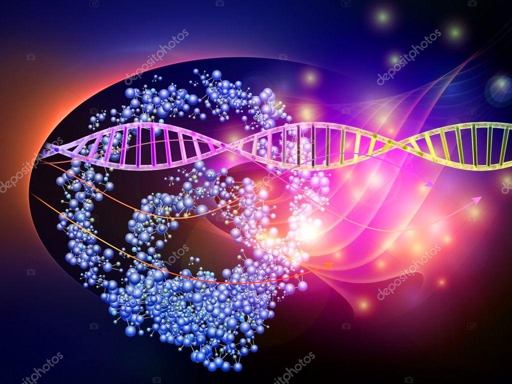 Biologia Molecolare Amaldi Pdf