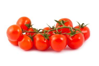Ripe red cherry tomatoes