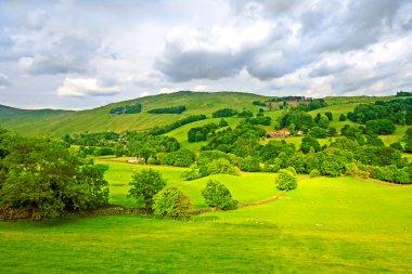 Landscape, Lake District stock vector