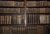 Fotografie staré knihy ve staré knihovně