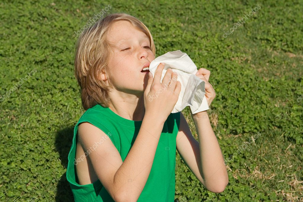Young child sneezing from allergies, hayfever or a cold