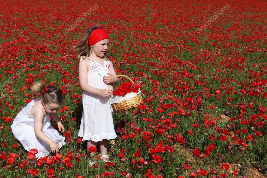 Little girls picking flowers in summer poppy field