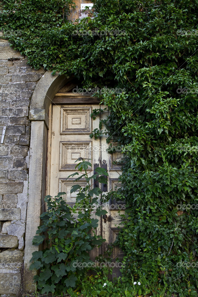 Door and ivy