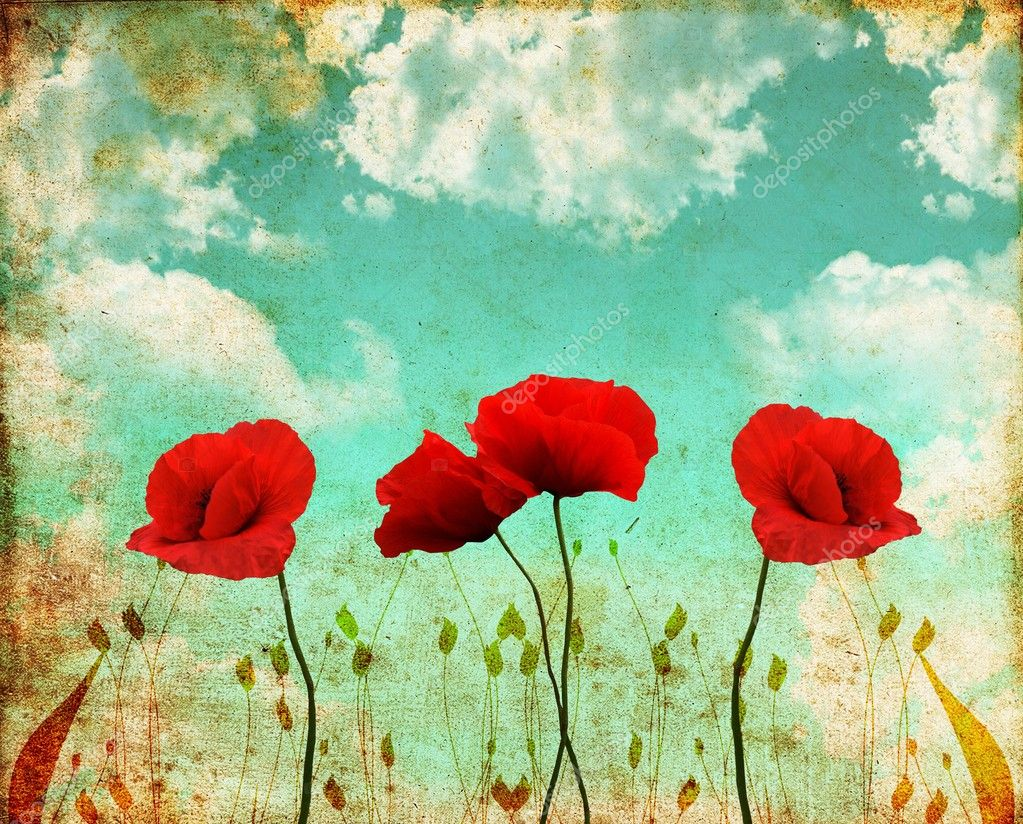 Poppies on a vintage sky
