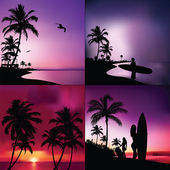 Fényképek Trópusi készlet
