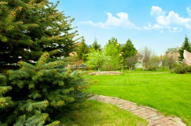 View of landscaped backyard of home