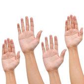 Zvedni ruku na bílém