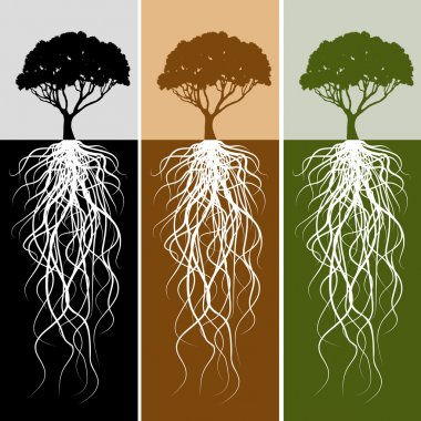 An image of a vertical tree root banner set. stock vector