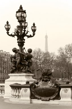 Street lantern on the Alexandre III Bridge in Paris, France.