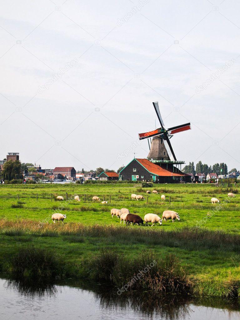 a dutch windmill netherlands u2014 stock photo thaifairs 5397670