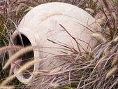 Hrnec v vysoké trávy v peru
