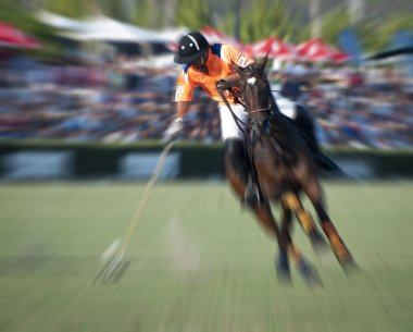 Zoom Polo Player
