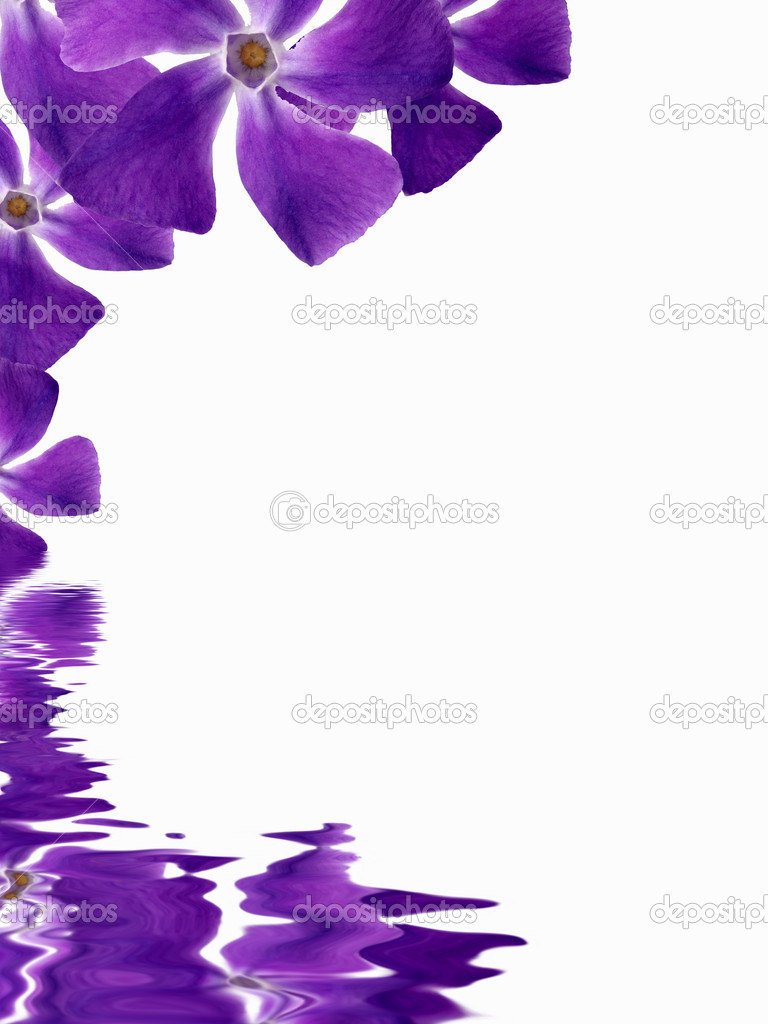 Flowers background reflecting in water