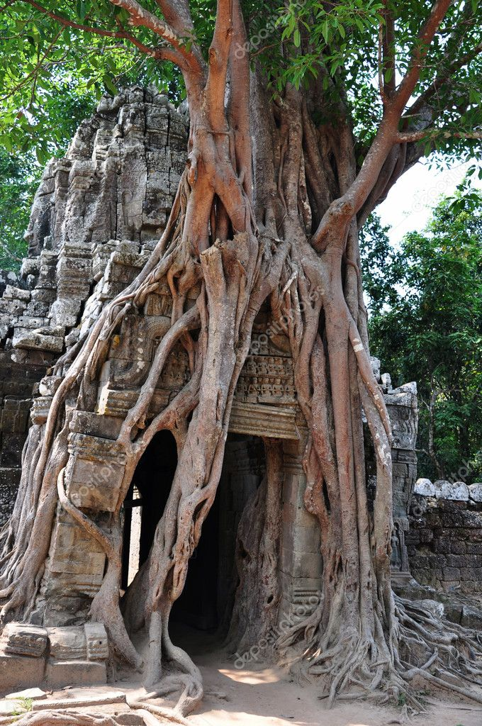 Landscape of Angkor, Cambodia