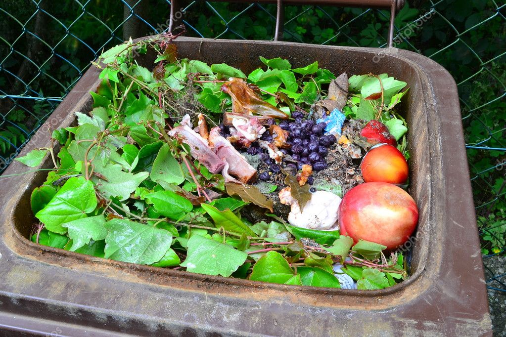 Household bio organic food waste
