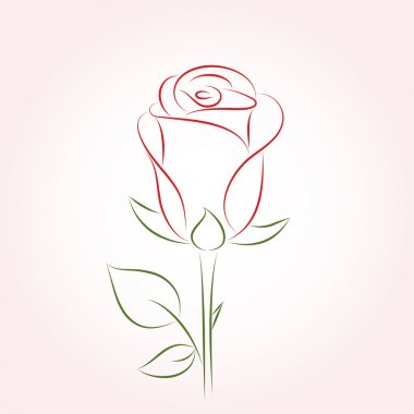 Rose. Vector illustration.