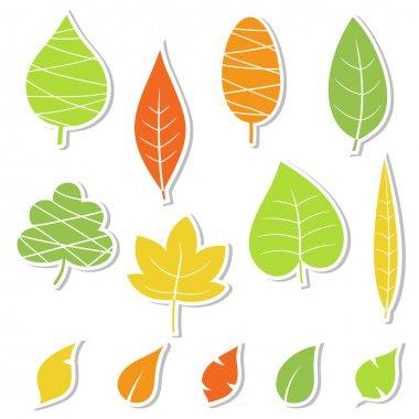 Set of leaves. Vector illustration.