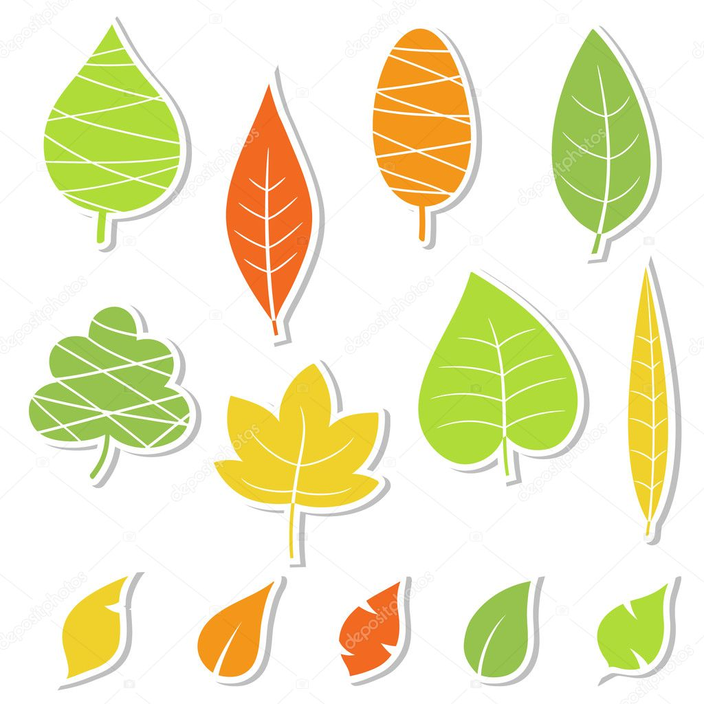 Set of leaves. Vector illustration.