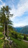 Alpok nyári látkép