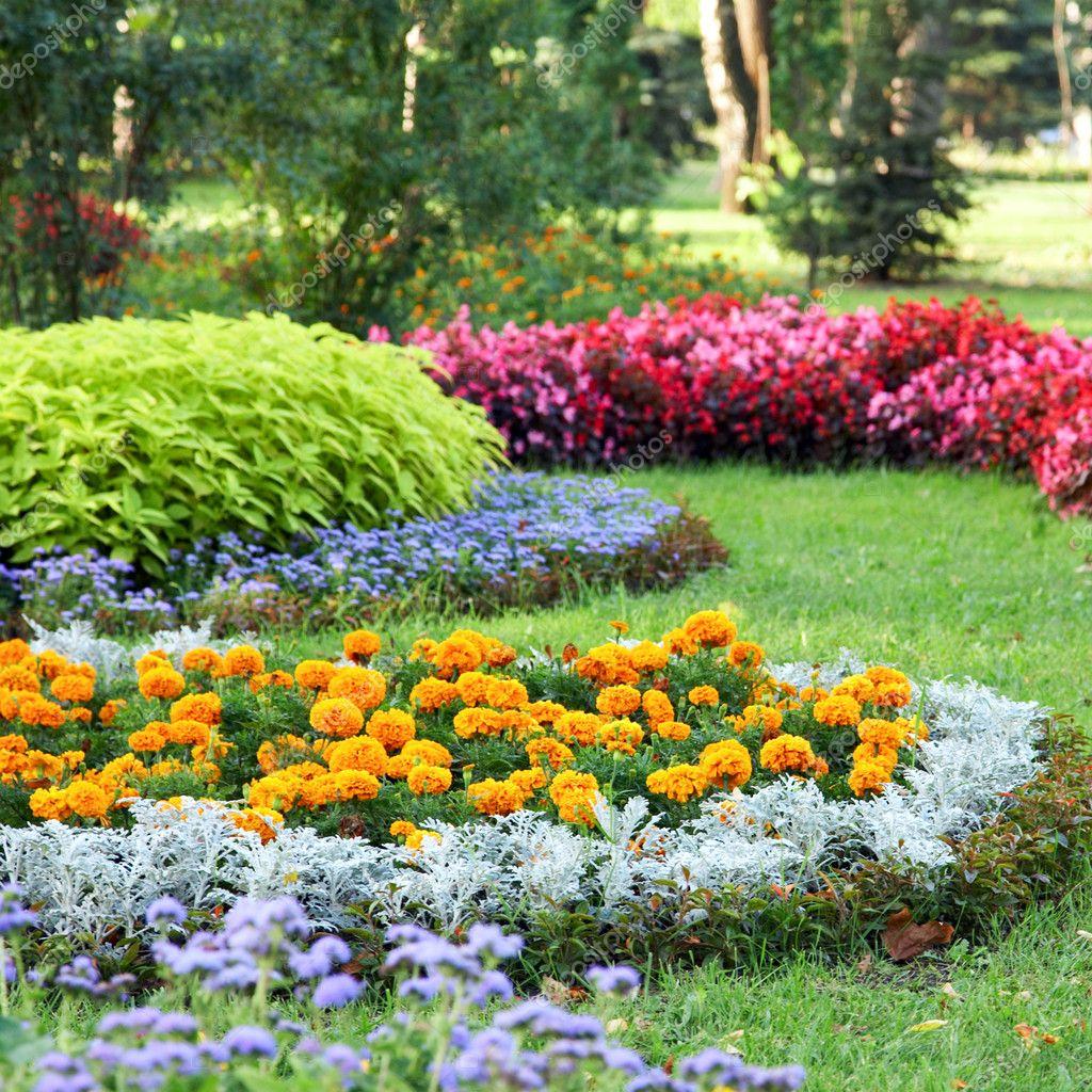 Flower landscaping stock photo wildman 6181376 for Flower garden landscape