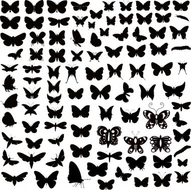 Large Collection Of Butterflies Silhouettes