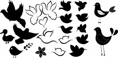 Cute Comic Birds Shapes Silhouettes
