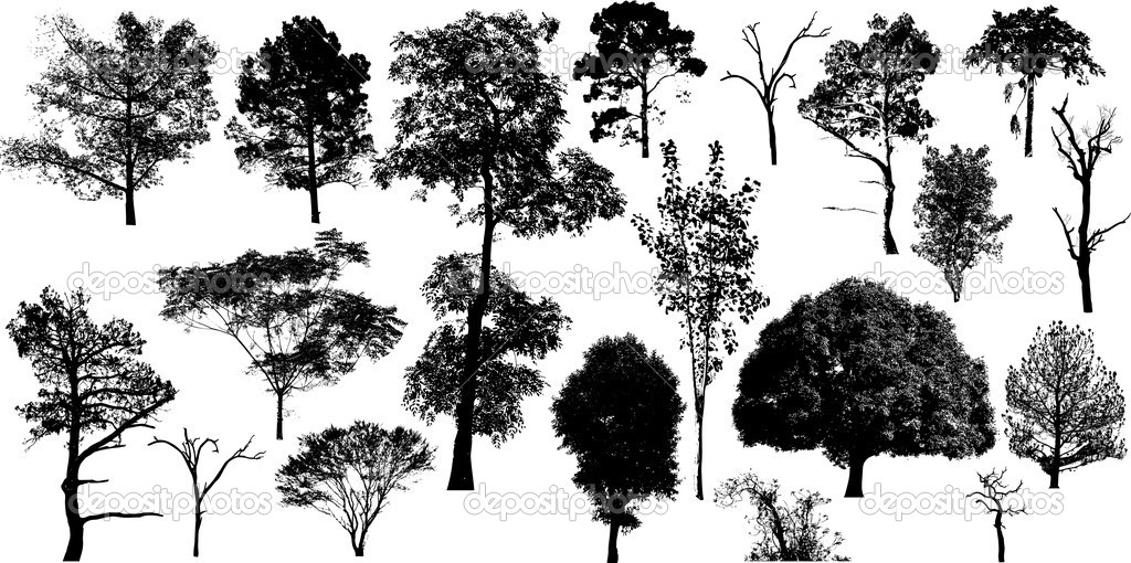 Nature Trees Collection