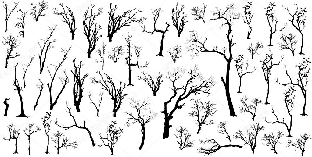 Large Collection Of Dead Trees Silhouettes Set