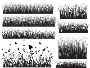 Black Shape Grasses With Insect
