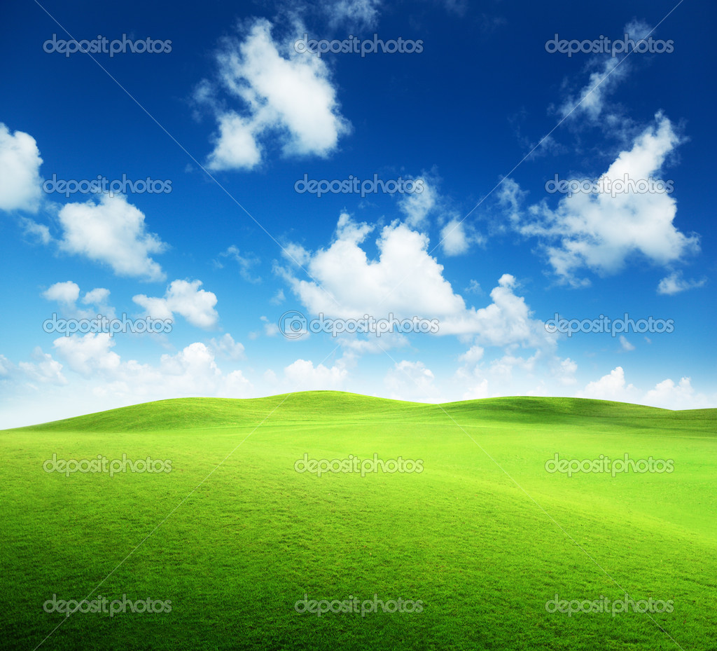 Фотообои Field of grass and perfect sky