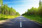 strada nella foresta russa