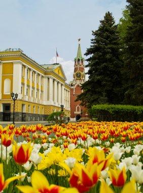 Street inside Kremlin, Moscow, Russia