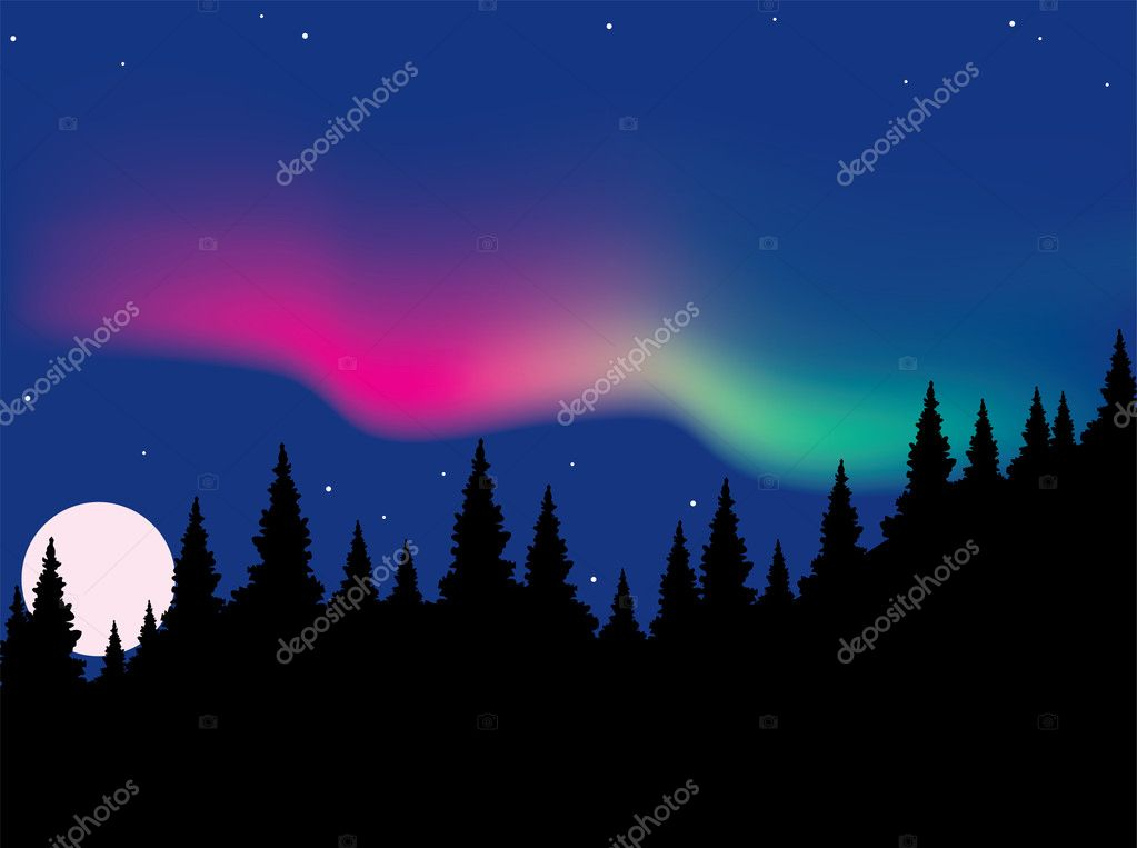 Vector aurora polaris over forest