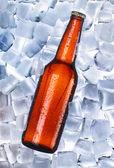Bier und Eis herum