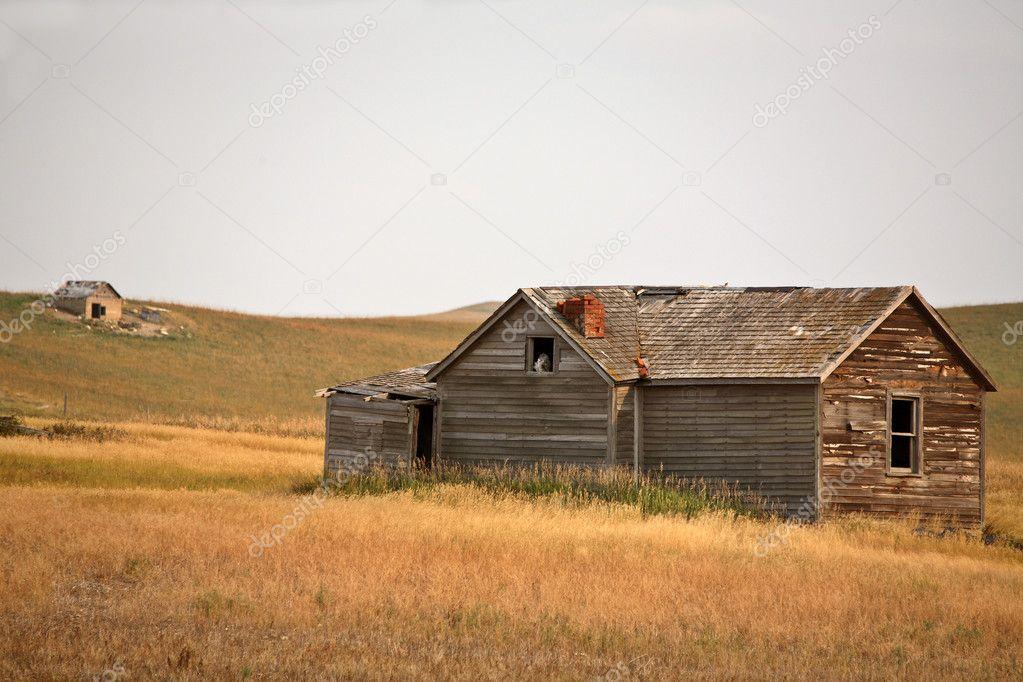 Hibou dans la fen tre abandonn de la vieille maison de for La maison de la fenetre