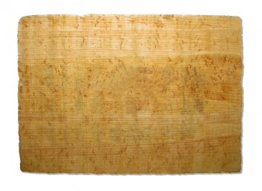 Piece of papyrus texture